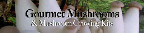 Gourmet and Mushroom Products